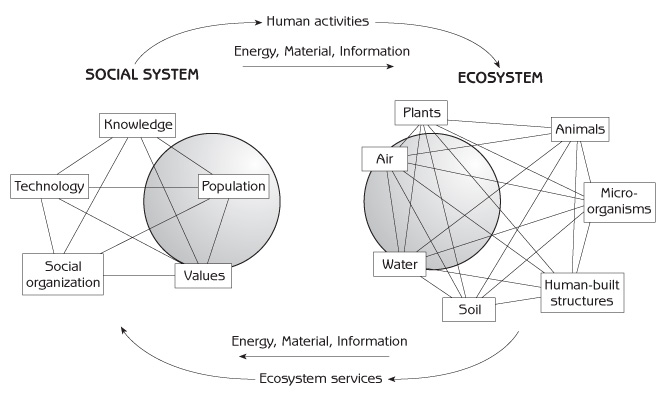 Interaction of the human social system with the ecosystem