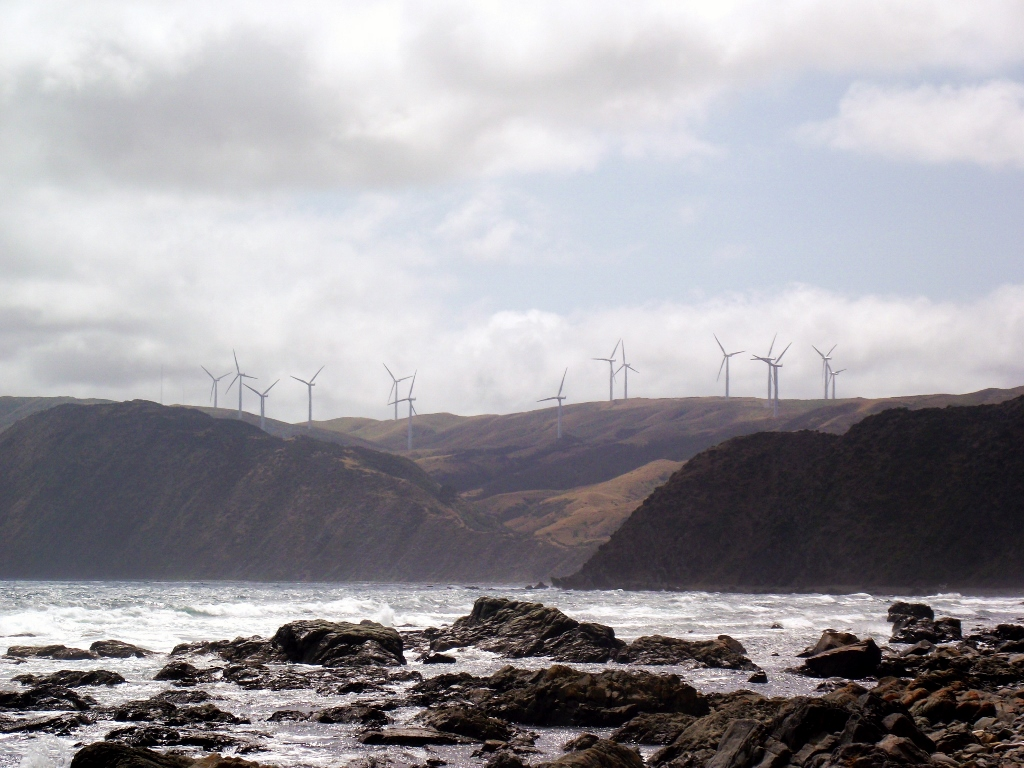Wind turbines on the coast of New Zealand